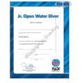 PADI Certificate - Junior Open Water Diver  - 40042