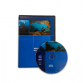 PADI DVD - Wreck Diving, Diver Edition - englisch - 70888